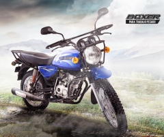 Bajaj Boxer 150 Cross (Индия), фото №13, цена